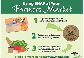 SNAP Usage Flyer